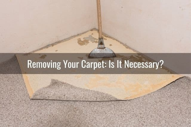 You Put Vinyl Planks Over Your Carpet, Can You Lay Laminate Flooring On Top Of Carpet Tiles